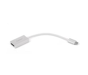 Dark USB 3.1 Type-C' den (4K UHD 30Hz) Display Port Dönüştürücü Adaptör (Alüminyum Kasa)